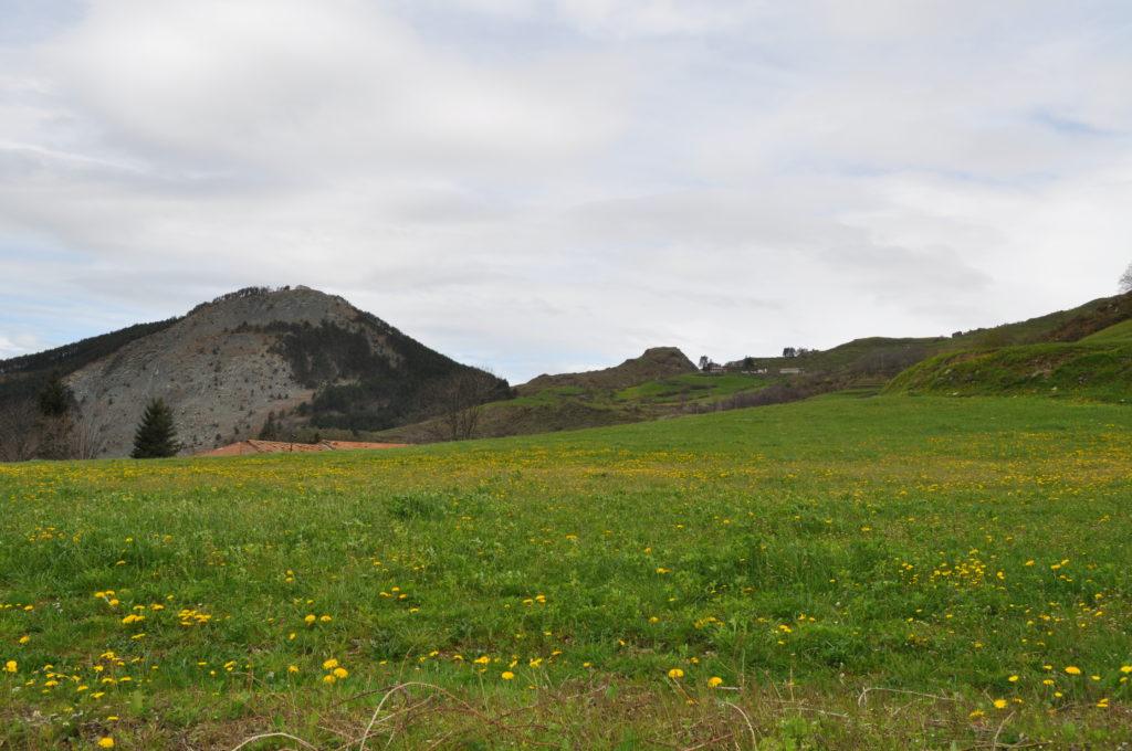 Età del bronzo - Monte Castellaro