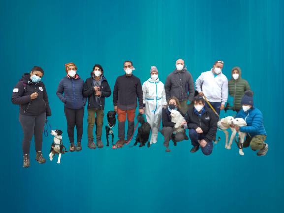 VOC - Cani e addestratori