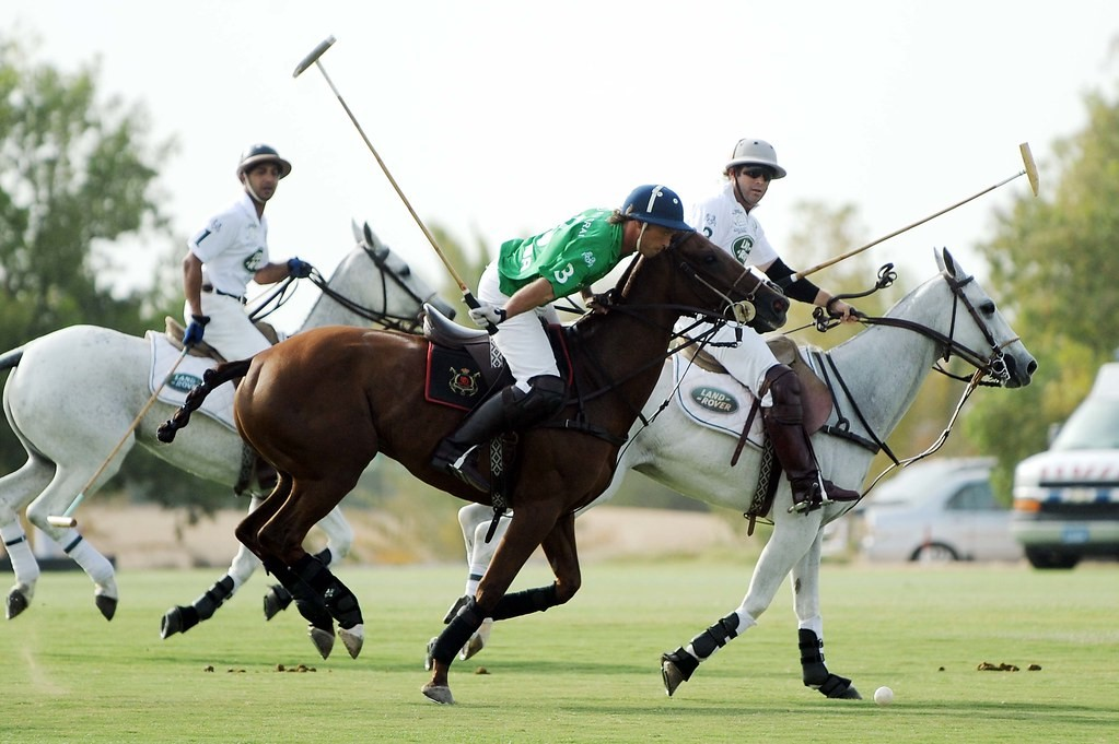 West Sussex - Polo